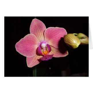 Orchid Flower of Love ( Autism ) Stationery Note Card