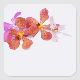 Orchid flower on light background square sticker