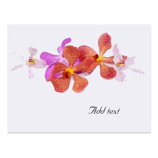 Orchid flower on white background Mouse Postcard