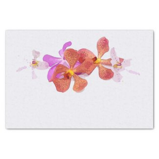 Orchid flower on white background tissue paper