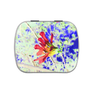 orchid flower red against blue invert candy tin