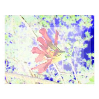 orchid flower red against blue invert letterhead