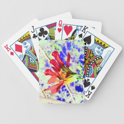 orchid flower red against blue invert playing cards