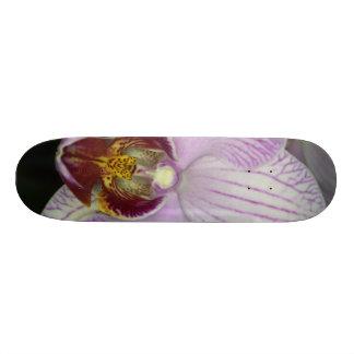 Orchid Flower Skate Board