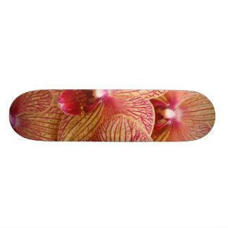 Orchid Flower Skate Decks