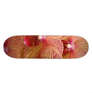 Orchid Flower Skateboard Decks