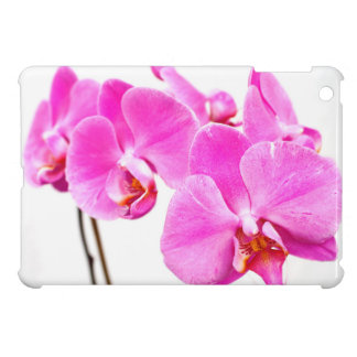 Orchid flowers closeup cover for the iPad mini