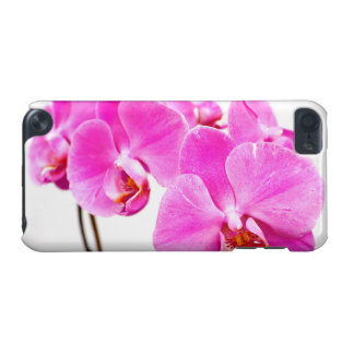 Orchid flowers closeup iPod touch (5th generation) case