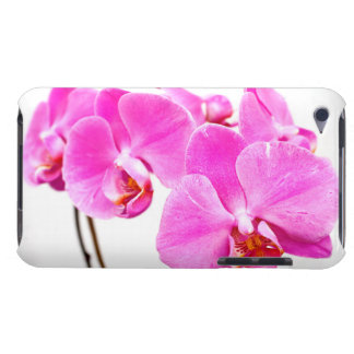 Orchid flowers closeup iPod touch cases