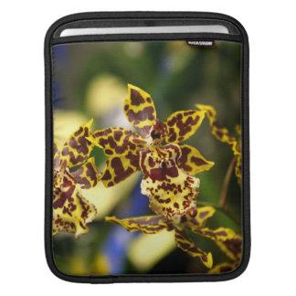 Orchid flowers iPad sleeve