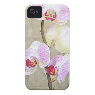 Orchid Flowers iPhone4 Case