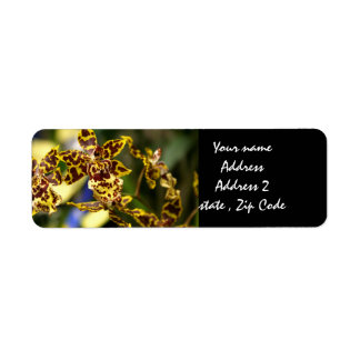 Orchid flowers label