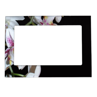 Orchid Flowers Magnetic Frame