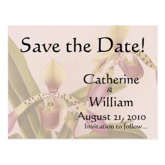 Orchid Flowers Save the Date Postcard