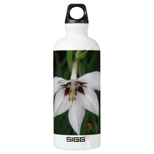 Orchid Flowers SIGG Traveler 0.6L Water Bottle