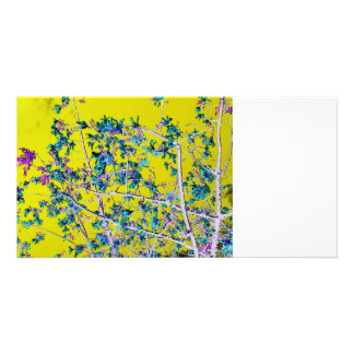 orchid flowers teal and yellow neat abstract desig personalized photo card