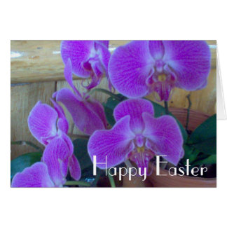Orchid for Easter Card