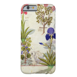 Orchid & Fumitory or Bleeding Heart Hedera & Iris Barely There iPhone 6 Case