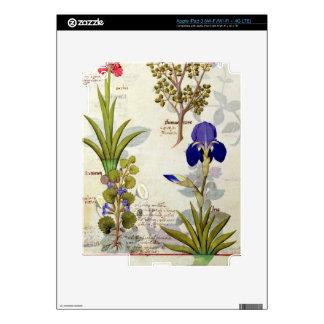 Orchid & Fumitory or Bleeding Heart Hedera & Iris iPad 3 Decals