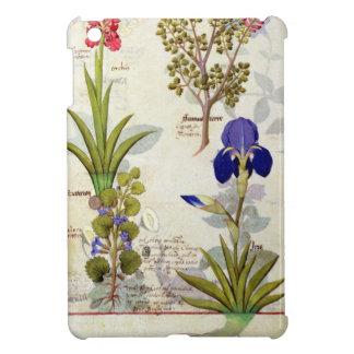 Orchid & Fumitory or Bleeding Heart Hedera & Iris iPad Mini Case