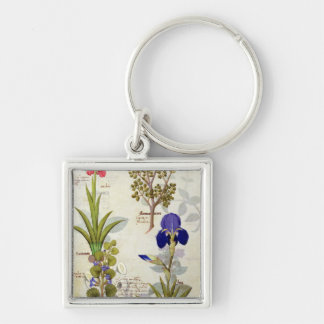 Orchid & Fumitory or Bleeding Heart Hedera & Iris Keychain