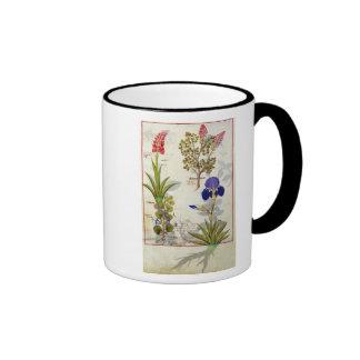 Orchid & Fumitory or Bleeding Heart Hedera & Iris Ringer Coffee Mug