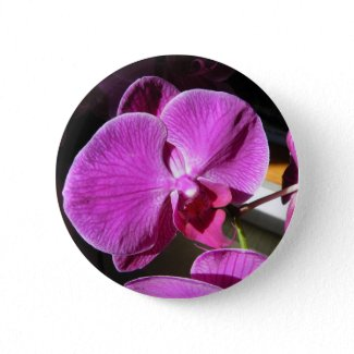 Orchid Giftware button