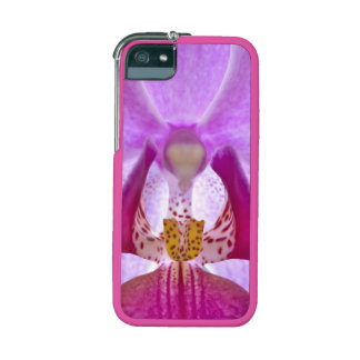 Orchid Graft iPhone 5/5S Case, Neon Pink, Chrome F iPhone 5 Case