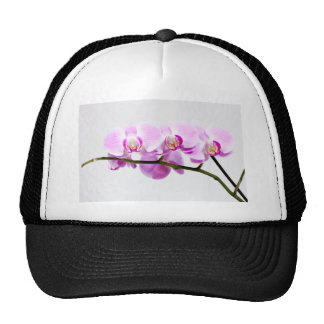 orchid hat