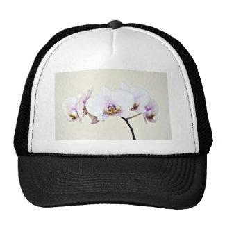 Orchid Mesh Hat