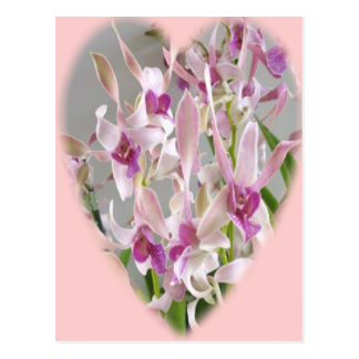 orchid-heart postcard