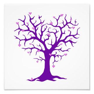 Orchid Heart Purple Tree Photo