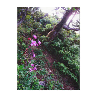 Orchid Hiking Trail Canvas Print