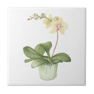Orchid in a Green Pot Botanical Ceramic Tile