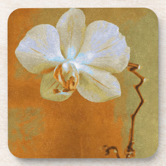 Orchid In Shades Of Orange Coaster