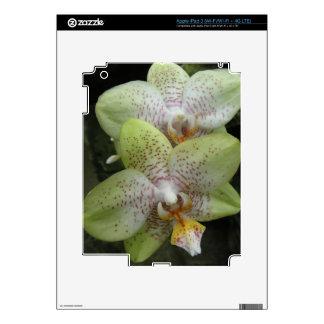 Orchid iPad 3 Skin