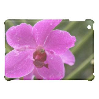 Orchid iPad Mini Cases
