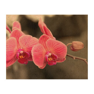 Orchid - It takes two to tango Cork Paper Prints