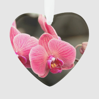 Orchid - It takes two to tango Ornament