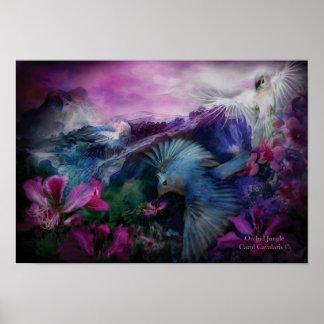 Orchid Jungle Art Poster/Print
