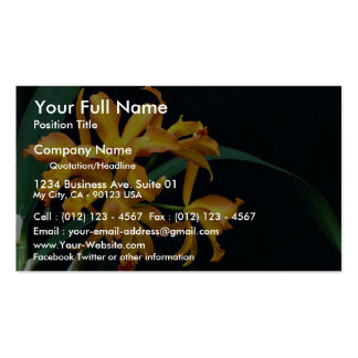Orchid Laela, cattleya, trick or treat Double-Sided Standard Business Cards (Pack Of 100)