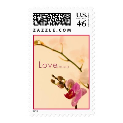 Orchid Love Amour postage $ 24.05