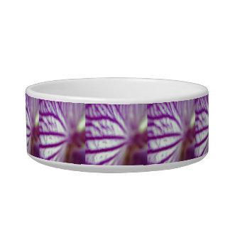 Orchid Macro Bowl