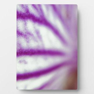 Orchid Macro Plaque