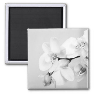 orchid 2 inch square magnet