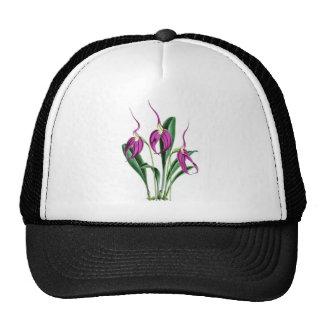 Orchid Masdevallia Harryana Trucker Hat