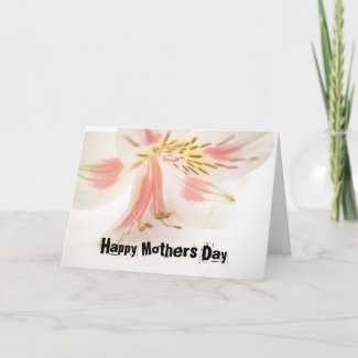 Orchid Mothers Day Card card