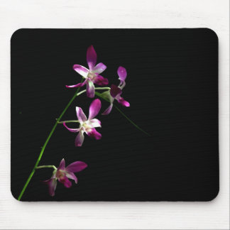 orchid ~ mouse pad mouse pad