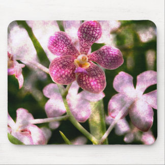 Orchid Mystery Mousepad