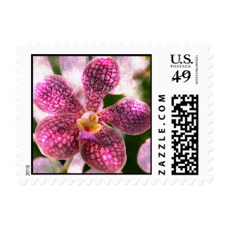 Orchid Mystery Postage